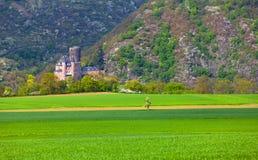 Vue du château historique de Katz de Burg sur le Rhin images libres de droits
