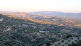 Vue du champ et des montagnes des tailles Photos libres de droits