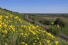 Vue du chemin de fer Photographie stock libre de droits