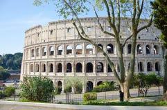 Vue du Colisé en parc à Rome Images libres de droits