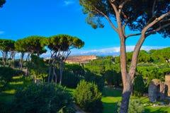 Vue du Colosseum Coliseo de Roman Forum à Rome, Italie photo libre de droits