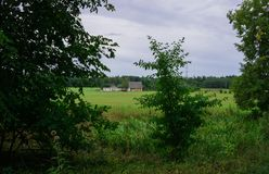 Vue du domaine rural dans le domaine Paysage en Lettonie photo stock