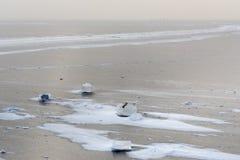 Vue du golfe de Finlande congelé dans le wiinter St Petersburg, Russie photos stock