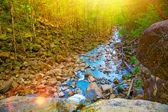 Vue du haut de la cascade tombant vers le bas, paysage de forêt avec une cascade, où commence la descente pour arroser Photo stock