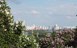 Vue du jardin botanique vers Kiev Photographie stock