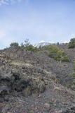 Vue du mont Etna à une altitude de 1.800 mètres avec le resi de neige Images libres de droits