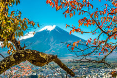 Vue du mont Fuji de pagoda rouge Images libres de droits
