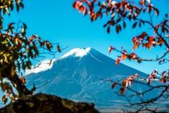 Vue du mont Fuji de pagoda rouge Photographie stock
