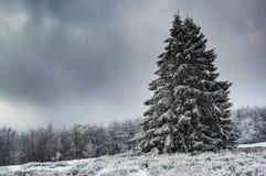 Vue du montagneux photographie stock libre de droits