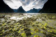 Vue du Nouvelle-Zélande Photos libres de droits