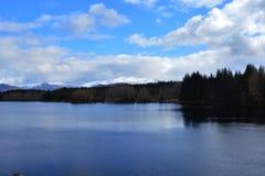 Vue du rien à travers le paysage de pin Image libre de droits