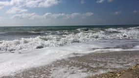 Vue du rivage arénacé de la Mer Noire banque de vidéos