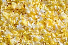Vue en gros plan des flocons d'avoine croustillants savoureux Photographie stock libre de droits