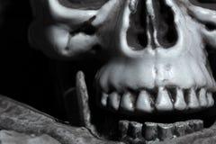 Vue en gros plan du crâne humain Image libre de droits