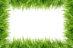 Vue fabriquée à partir de l'herbe Photo libre de droits