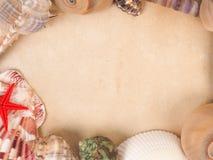 Vue faite de coquilles sur le vieux papier Photo stock
