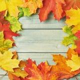 Vue faite de feuilles d'érable Photo stock
