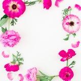Vue faite de fleurs, roses, pivoines et feuilles roses sur le fond blanc Composition florale Configuration plate, vue supérieure Photo stock