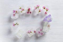 Vue faite de glaçons floraux sur le fond en bois photographie stock