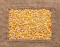 Vue faite de toile de jute avec du maïs Images stock