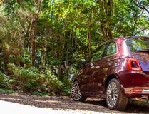 Vue fraîche de Fiat 500 dans la forêt jaune canari photos stock