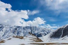 vue géorgienne d'hiver d'église Photographie stock libre de droits
