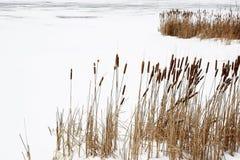 Vue gelée de lac Photographie stock