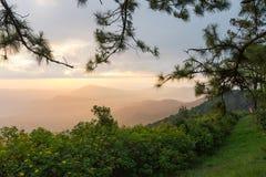 Vue gentille de paysage pendant le matin chez Phurua, Loei photographie stock libre de droits