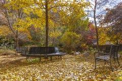 Vue grande-angulaire de banc de parc circulaire Salt Lake photos stock