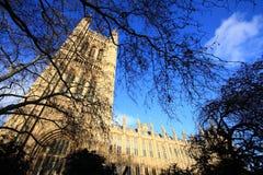 Vue grande-angulaire de la construction du Parlement du R-U Image libre de droits