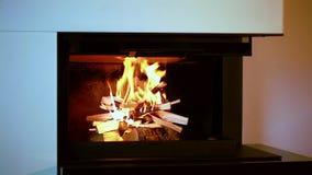 Vue haute étroite de bois brûlant en cheminée Beaux milieux clips vidéos