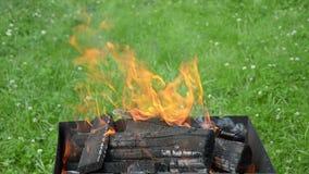 Vue haute étroite des langues et des firewoods du feu dans le barbecue de jardin banque de vidéos