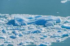Vue haute ?troite du burg bleu de glace floting dans le lac bleu d'aqua au glacier de Perito Moreno en parc national de visibilit images libres de droits