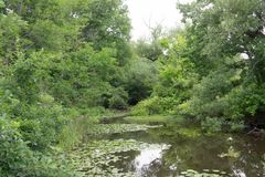 Vue horizontale d'une lagune photos stock