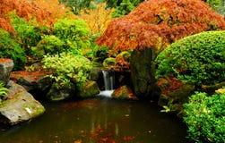 Vue horizontale large d'une cascade à écriture ligne par ligne en automne image stock