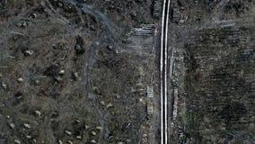 Vue horrible d'une route blanche au milieu d'une forêt détruite après un ouragan banque de vidéos