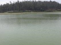 Vue impressionnante de lac avec le fond de forêt Image libre de droits