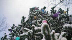 Vue inférieure, décorations sur l'arbre de Noël couvert de neige en parc clips vidéos