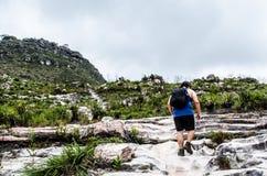 Vue inférieure d'un pèlerin sur le sien dos montant une traînée sur une montagne avec beaucoup de plantes vertes photo libre de droits