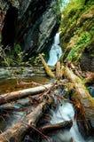 Vue inférieure d'une petite cascade Estyuba en Russie identifiez-vous tombé le premier plan Image libre de droits
