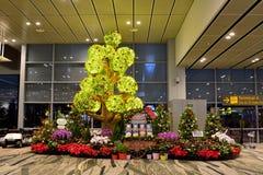 Vue intérieure d'aéroport international de Changi à Singapour Photographie stock libre de droits