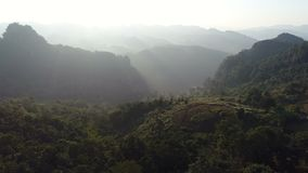 vue 4K aérienne au-dessus de forêt tropicale avec le brouillard au lever de soleil banque de vidéos