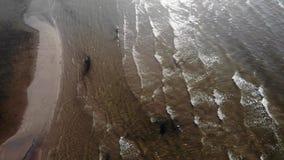 vue 4k aérienne des vagues sur la plage de Jurmala banque de vidéos