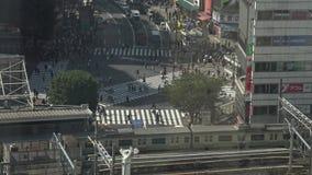 vue 4K aérienne du passage pour piétons de foule dans l'intersection Tokyo de Shibuya clips vidéos