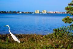 Vue la Floride USA de Naples la Floride Marco Island Photo stock