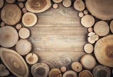 Vue la section transversale du tronc d'arbre montrant des anneaux de croissance images stock