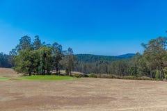 Vue large de jardin vert avec l'herbe, les arbres, les usines, la montagne et la voie, Ooty, Inde, le 19 août 2016 Images stock
