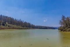 Vue large de lac avec le beau ciel, tresse à l'arrière-plan, Ooty, Inde, le 19 août 2016 Photo libre de droits