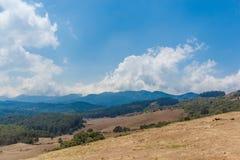 Vue large de paysage avec l'herbe, les arbres, les usines, les ombres et la montagne, Ooty, Inde, le 19 août 2016 Photo libre de droits