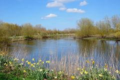 Vue le long de la rivière docile à l'arborétum commémoratif national, Alrewas image stock